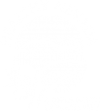 Healthy Nevada Logo